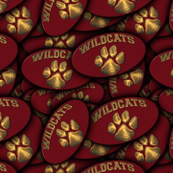 Wildcats 22