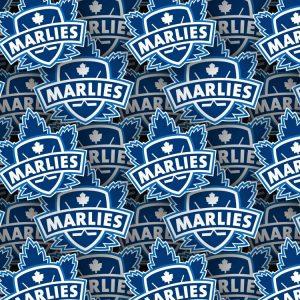 Toronto Marlies 22