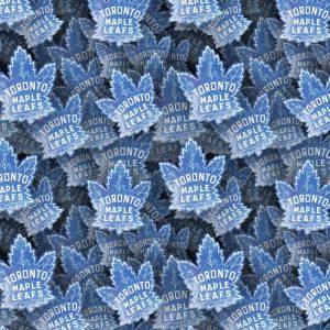 Toronto Maple Leafs 24