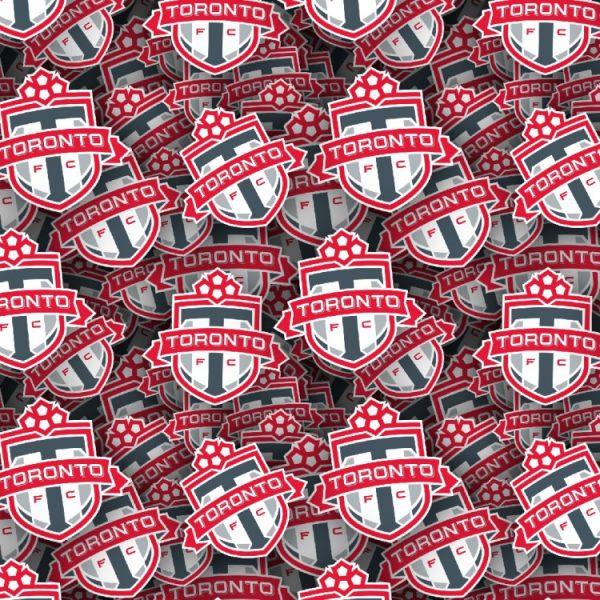 Toronto FC 22