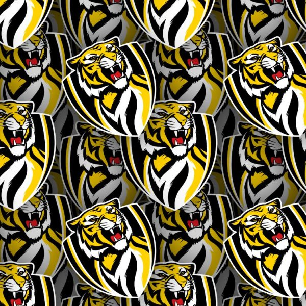 Richmond Football Club 22