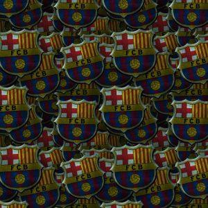 FC Barcelona 24