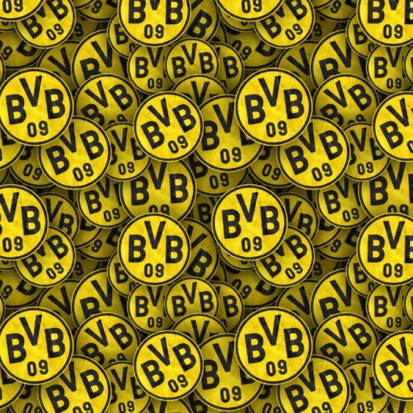 Borussia Dortmund 22