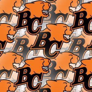 BC Lions 23
