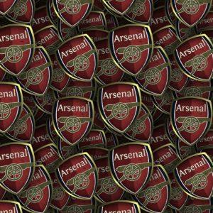 Arsenal FC 24