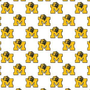 University of Michigan Wolverines 22