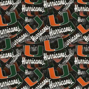 University of Miami Hurricanes 3D