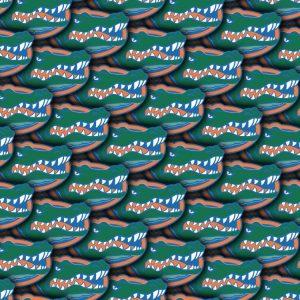 University of Florida Gators 23