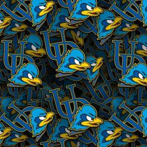 University of Delaware Blue Hens