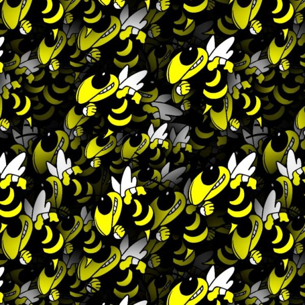 Georgia Institute of Technology Yellow Jackets, Black