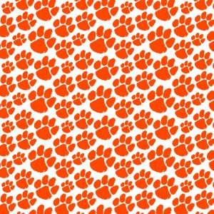 Clemson University Tiger Paw 27