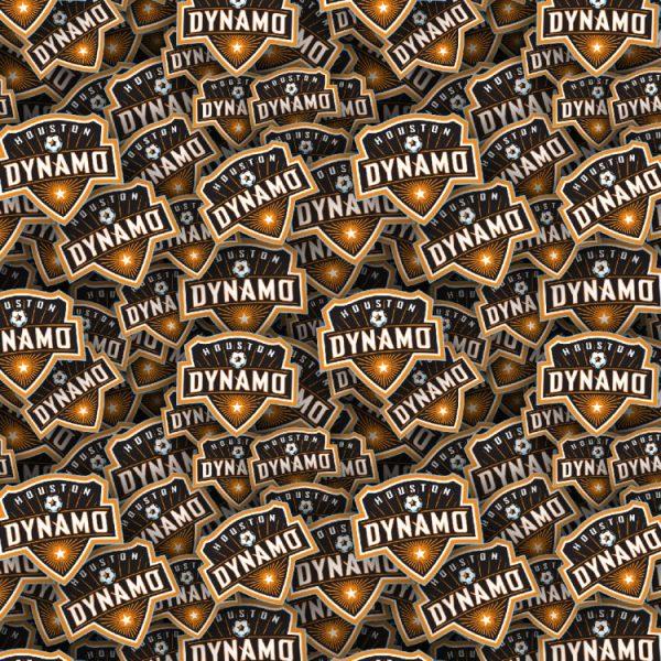 Houston Dynamos 22