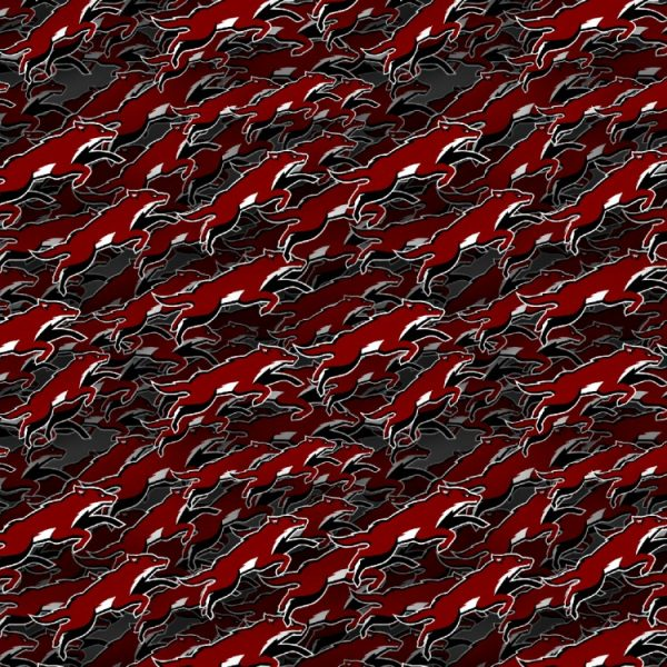 Arizona Coyotes 23