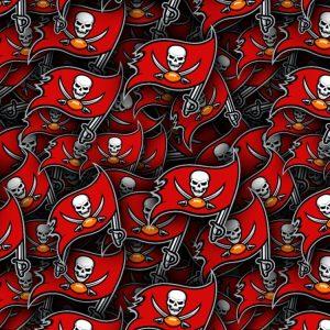 Tampa Bay Buccaneers 22