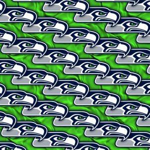 Seattle Seahawks 23