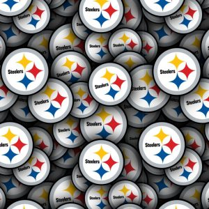 Pittsburgh Steelers 25