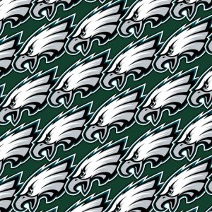 Philadelphia Eagles 24
