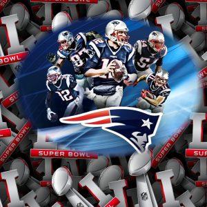 New England Patriots 11x16