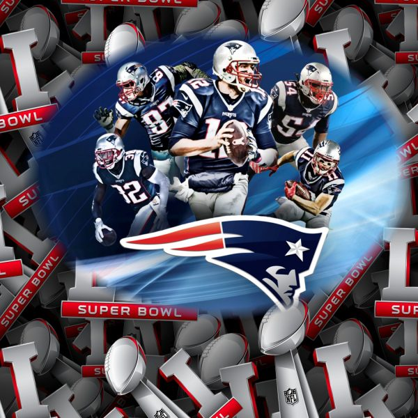 New England Patriots 11x16