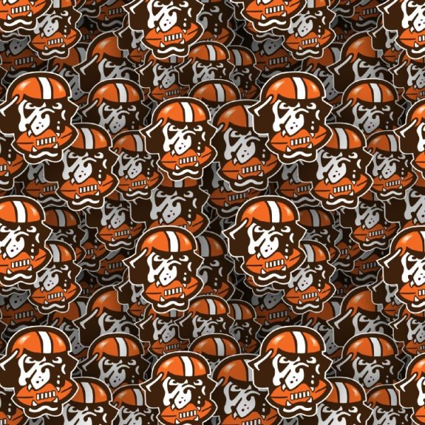 Cleveland Browns 23