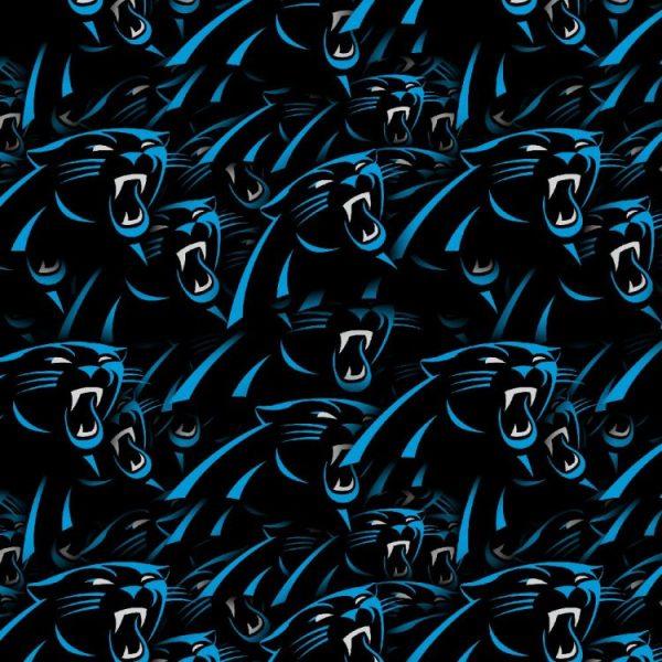 Carolina Panthers 23
