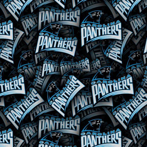 Carolina Panthers 22