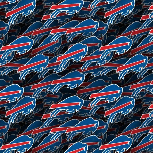 Buffalo Bills 22