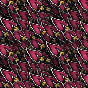 Arizona Cardinals 23