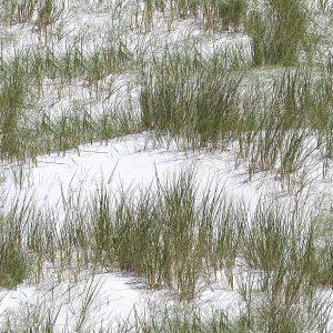 Snow Grass Camo 1