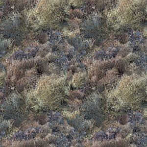 Tumbleweed 22 Camo