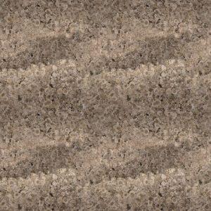 Desert Lichen 24 Camouflage
