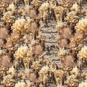 Desert Brambles Camouflage