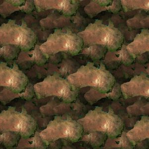 Australia 24 Camouflage