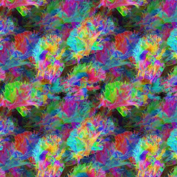 Brain Neurons 24