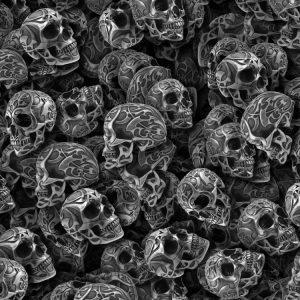 Tribal Skulls 23