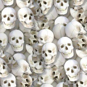 Skulls 666