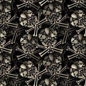 Skull of Bones 23