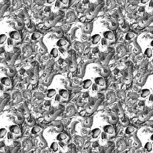 Skulls & Snake 27