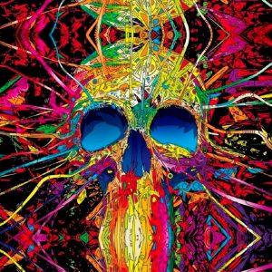Psycho Skull 11x16