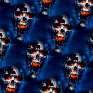 Fire & Ice Skulls 23