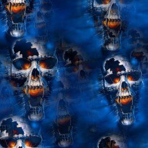 Fire & Ice Skulls 22
