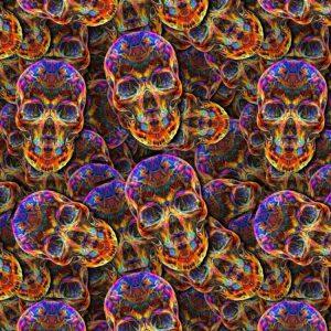 Crystal Skulls 22