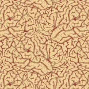 Brains 26