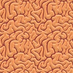 Brains 24