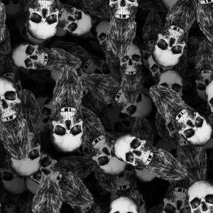 Bearded Skulls 22