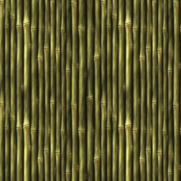Bamboo 24