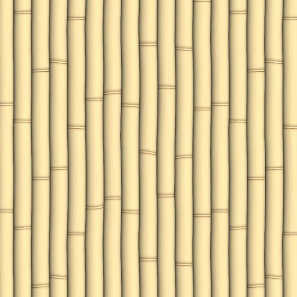 Bamboo 22