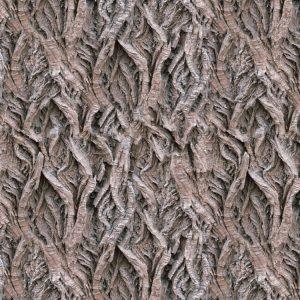 Willow Bark 23