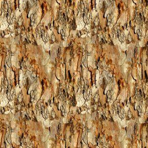 Eucalyptus Bark 22