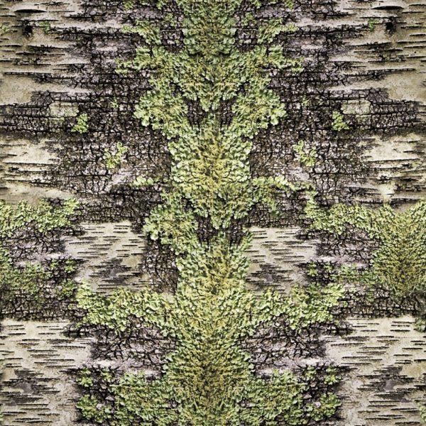 Birch Lichen Camo